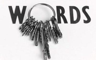 Optymalna ilość słów do pozycjonowania